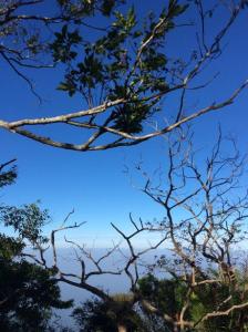 我的天空是一片藍色